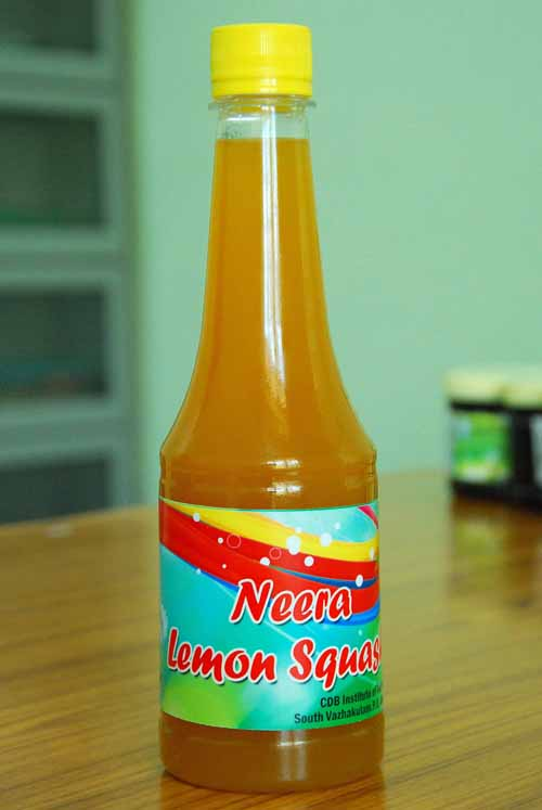 kerala heritages,kerala travel,kerala tourism,kerala drink neera, non alcoholic kerala drink, indian drink, indian national drink